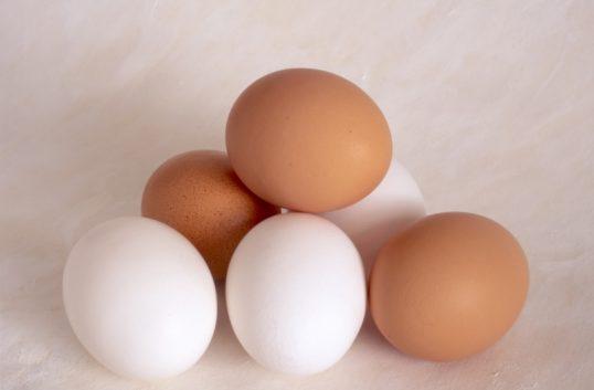 Fågelinfluensa ger färre ägg