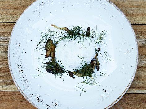 Bakad Torsk med svampar från Hällestad, rotselleri och fänkålsdill.
