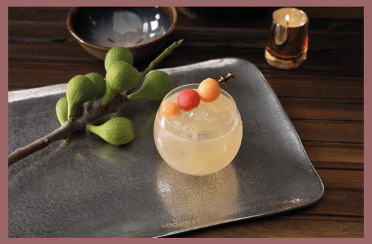 Bruncharita Margarita