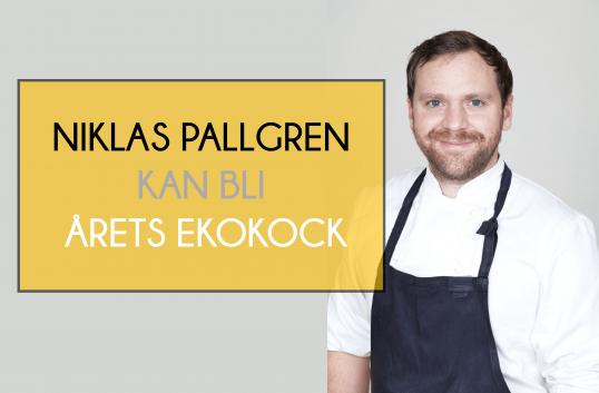 Niklas Pallgren kan bli Årets ekokock