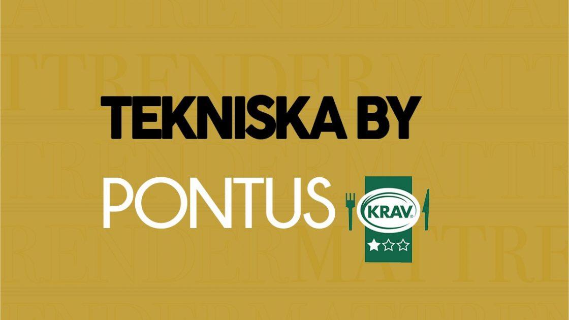 20190117-Pontus