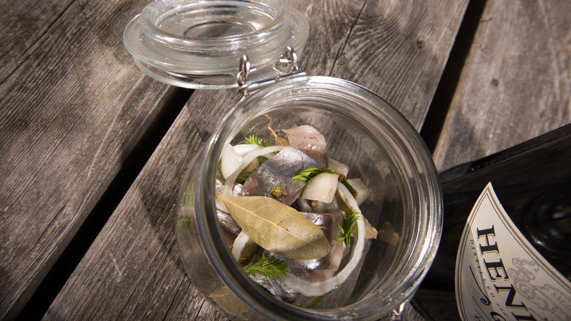 Sill inlagd i en lag med gröna enbär, granskott, gurka och Hendrick's gin